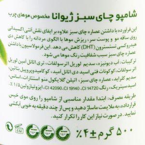 سوپر مارکت اینترنتی شامپو موی سر چای سبز 500 گرمی ژیوانا
