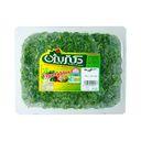 سبزی قورمه 380 گرمی دکتر بیژن