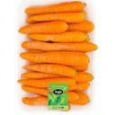 هویج 1 کیلویی بلوط