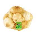 پیاز زرد خوش قالب متوسط 2 کیلویی بلوط