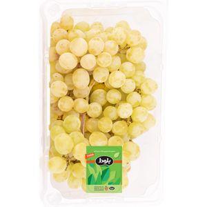 انگور بی دانه سفید نیم کیلویی بلوط