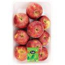 سیب قرمز یک کیلویی بلوط 8 تا 9 عدد