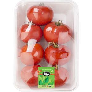 فروشگاه اینترنتی گوجه گلخانه ای 1 کیلویی بلوط