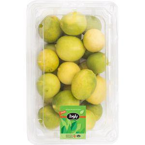 خرید اینترنتی لیمو ترش شیرازی 500 گرمی بلوط