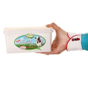 خرید اینترنتی پنیر لاکتیکی آی ام ال 800 گرمی صباح