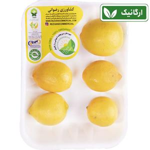 لیمو ترش ارگانیک 500 گرم رضوانی